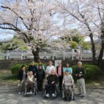 白山西台公園の桜とお客様